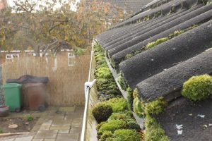 Gutter Cleaning Braintree